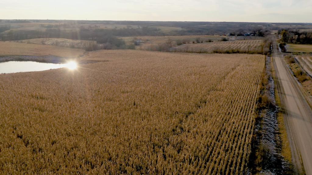 Survey Says Iowa Farmland Values Rose Despite Challenges 2