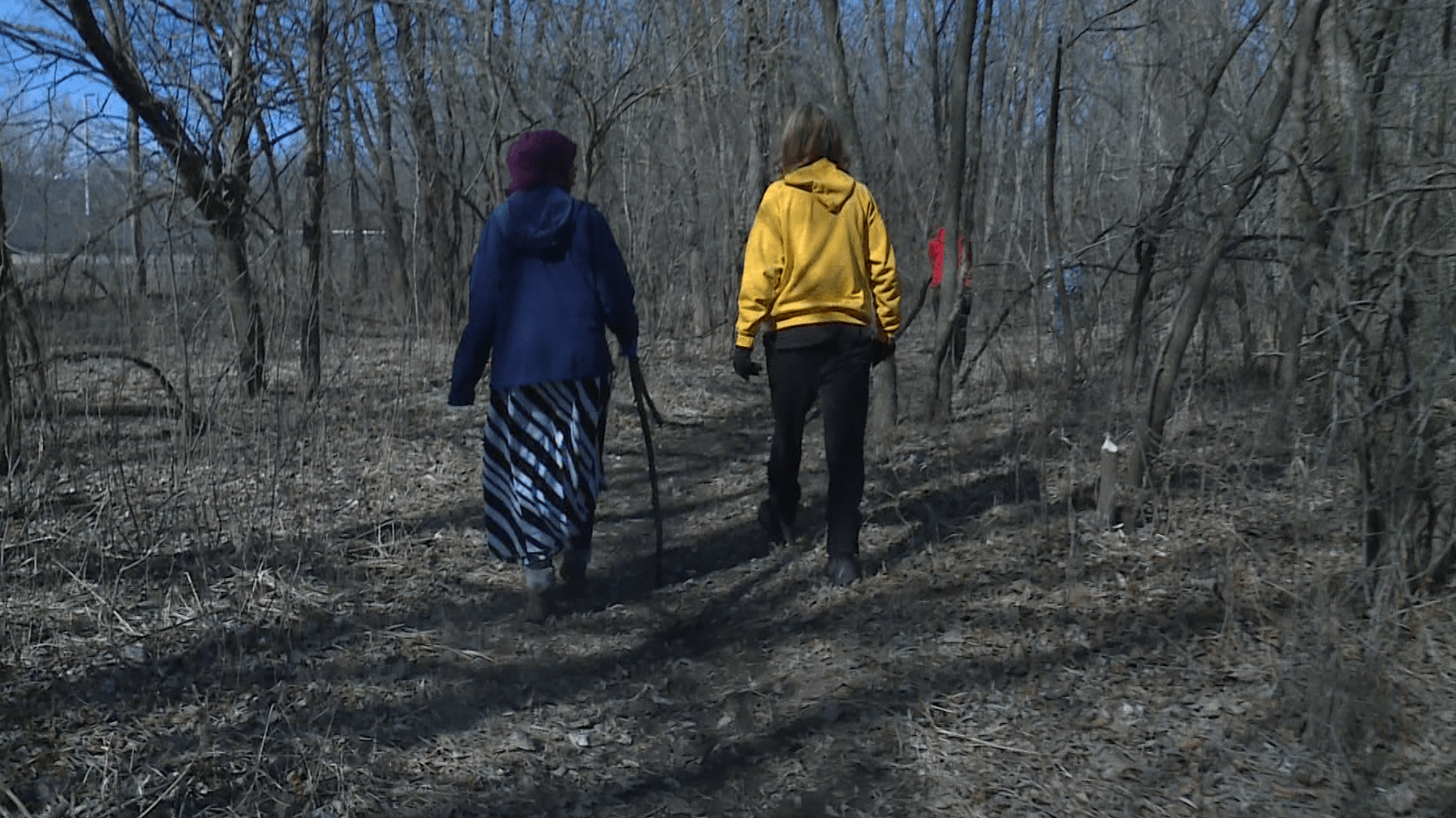 Volunteers Conduct Second Search for Missing Des Moines Teen 1