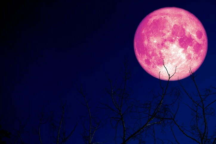 Look Up Tonight to Catch a Glimpse of the Strawberry Moon 6